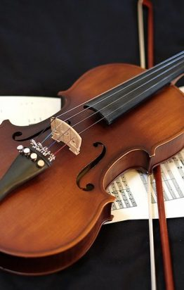 Purchasing a violin? Myths and warning signs.
