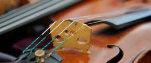 Buy A Violin Online