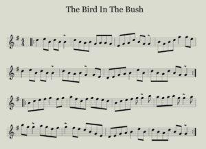 the bird in the bush reel sheet music notation