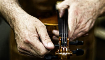 Aged hands are tuning a fiddle using the top tuning pegs