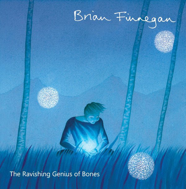 Brian Finnegan solo tin whistle album cover ravishing genius of bones