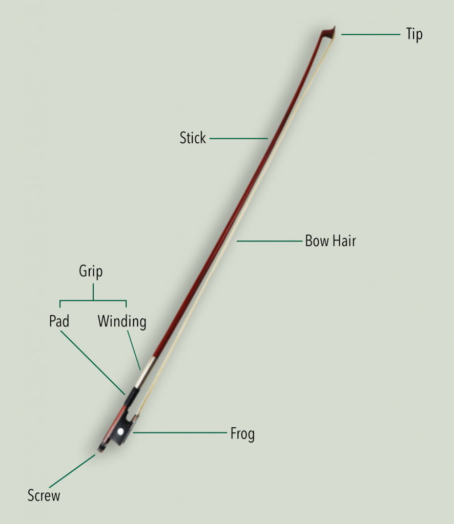Diagram showing the different parts and anatomy of a violin bow