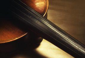 Violin strings fiddle strings