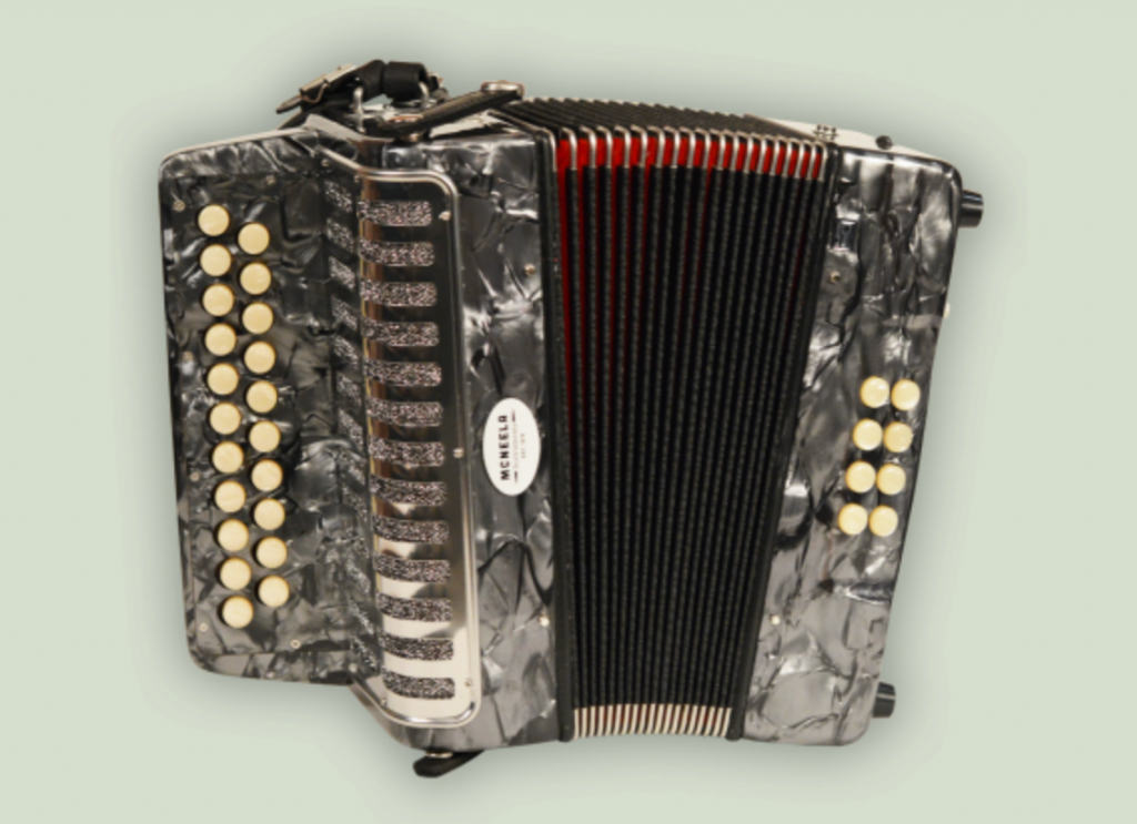 McNeela Beginner Accordion