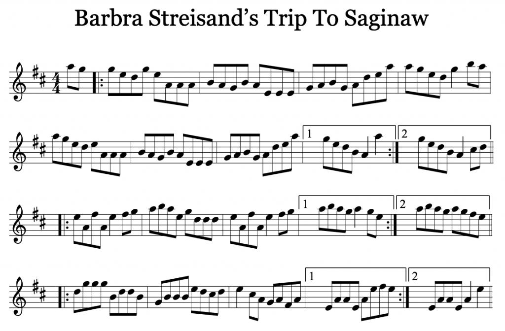 Barbra Streisand's Trip to Saginaw Reel by Liz Carroll